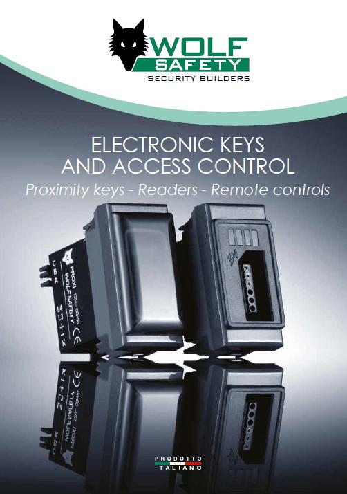Electrical keys